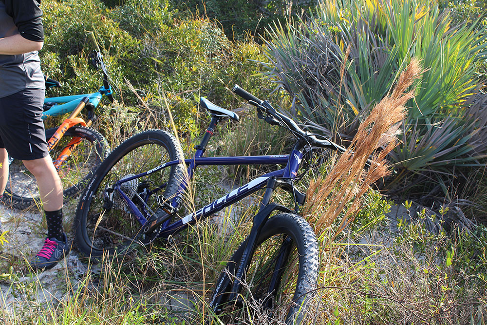 Check out the Mountain Bikes available at Bikes Palm Beach