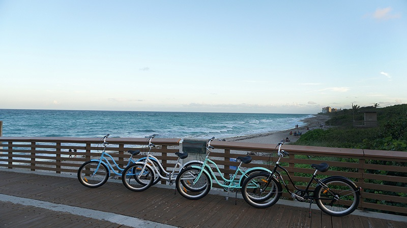 Shop Cruiser Bikes at Bikes Palm Beach including Playa by Eagle Bicycles.