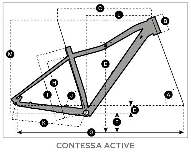 Scott Contessa Active Geometry Chart