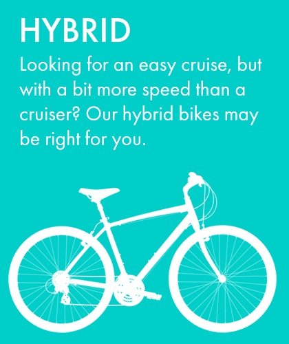 Hybrid Bike Rental at Bikes Palm Beach
