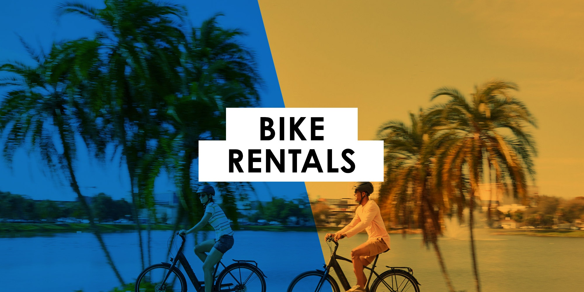 Bike Rentals at Bikes Palm Beach